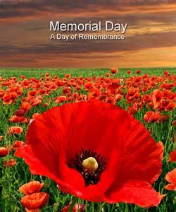 Memorial day with poppies