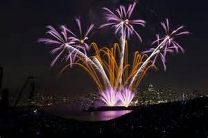 fireworks three purple flowers