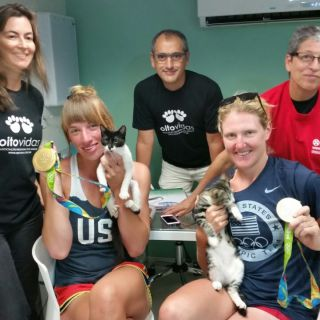 Olympians save Rio cats